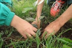 plan_escolar_sostenibilidad_04