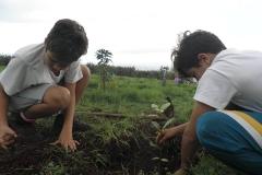 plan_escolar_sostenibilidad_06