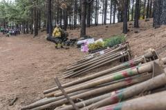 Plan-voluntariado-ambiental-Cabildo-de-Gran-Canaria-4