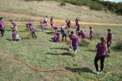 foresta_voluntariado_life_scouts_001