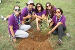 foresta_voluntariado_life_scouts_004